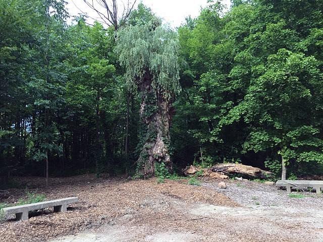 Big Oak Nature Park