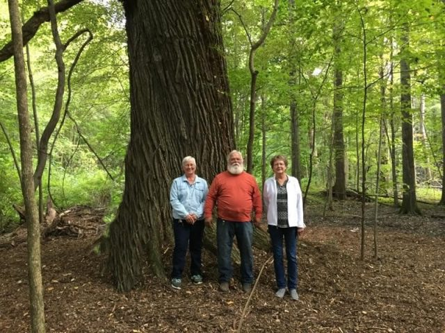 Saybrook Township Park-
